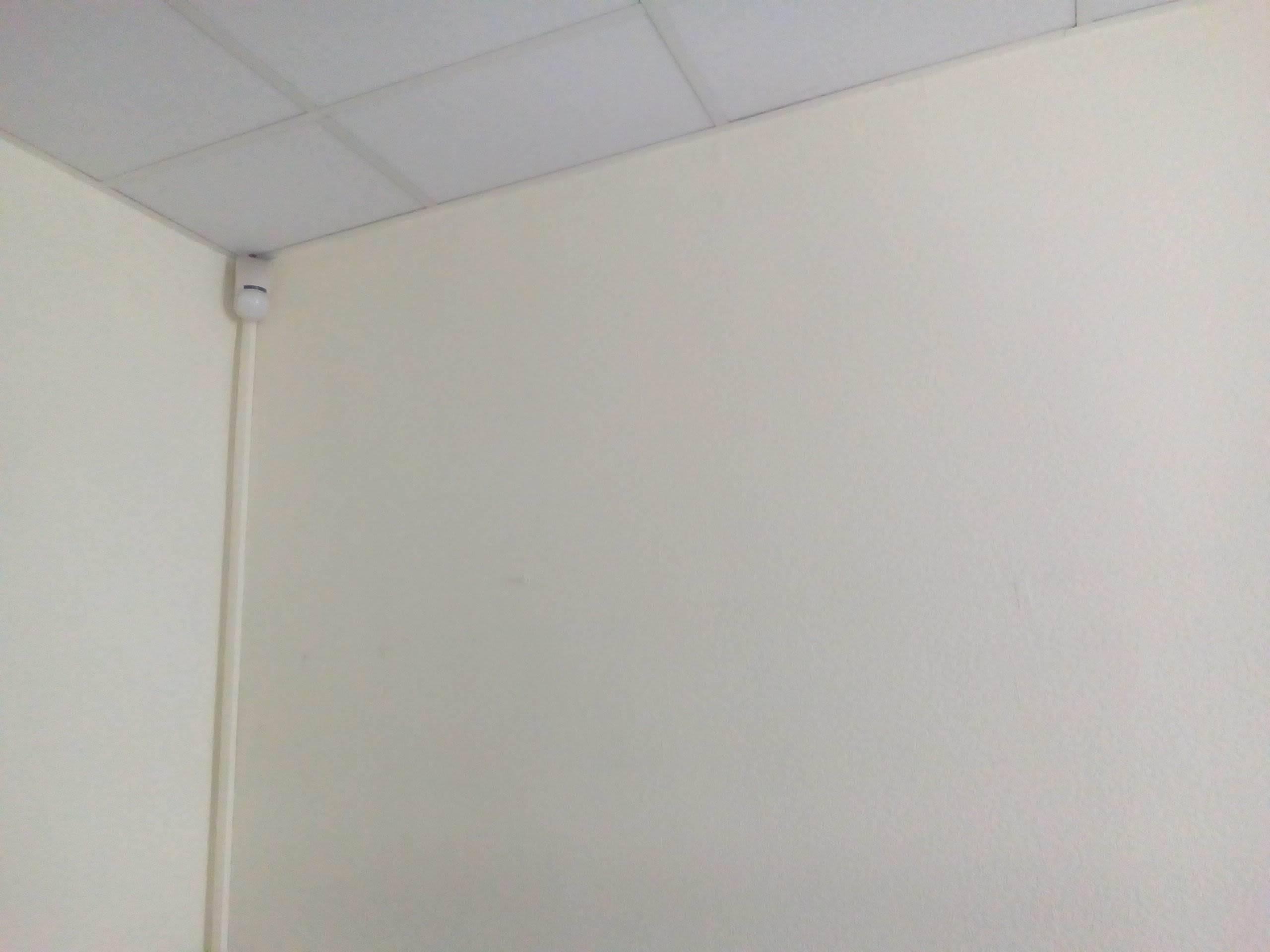 Ремонт в офисе